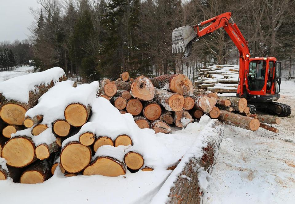 Montpelier, VT. 01/16/19- A loader piles cut logs on the property of Morse Farm Sugarworks. Owner Burr Morse stopped his ski touring business due to unpredictability of weather he blames on climate change. Trails are now being logged. Carbon emissions have risen 16 percent above the 1990 levels in Vermont, some of the reasons are aging gas-guzzling pickups, wood-buriing stoves and drafty old homes. Photo by John Tlumacki/Globe Staff(metro)