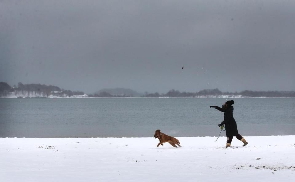 Isabella Devincenzo played fetch with her dog Daisy at the M Street Beach in Boston on Monday.