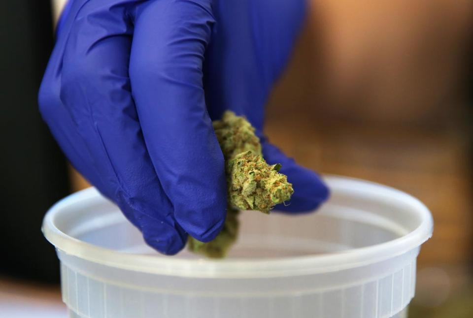 An employee worked with marijuana flower.