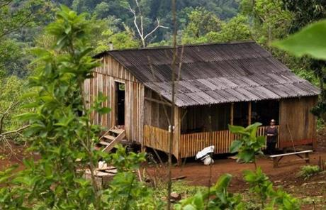 In remote Misiones, human settlement is scant, limited to a few lonely pioneers who eke out a living by planting tea, bananas and tobacco.