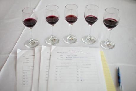 A flight of five red wines were ready to be tasted.