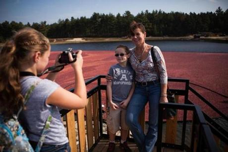 Kate Loonie takes a picture of Matt Loonie and Eithne Smith with a cranberry bog as backdrop.