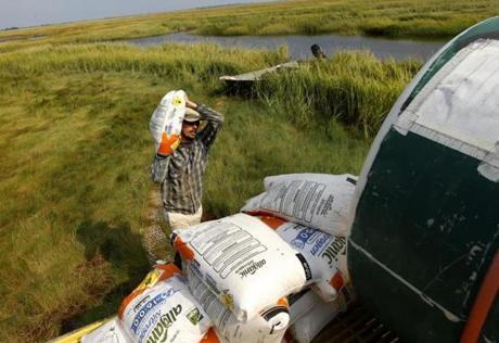 David Johnson offloaded fertilizer from a boat onto a station in the marsh.