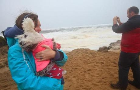 Alison Tames of Plum Island held her dog, Zoey, amid the high winds.