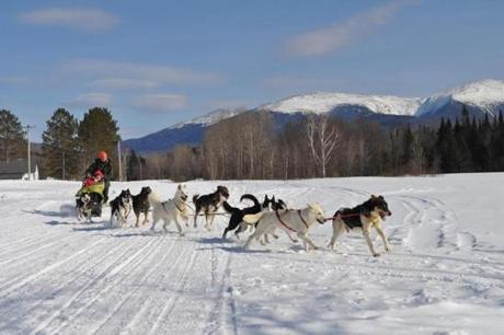 New Hampshire's Muddy Paw Sled Dog Kennel