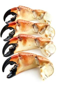 Florida stone crabs are packed and ready to fly.