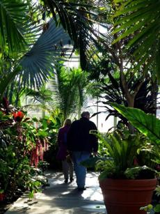 A couple explored the lush plantings of the Botanical Center at Roger Williams Park.