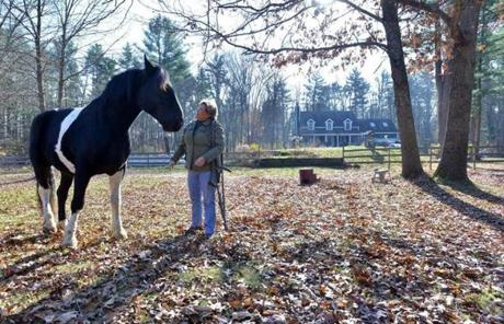 Rosse stood with her horse Jack, a Percheron and Paint cross, before a visit from Salvia.