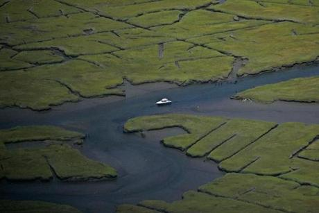 Sandwich, Ma., 8/24/07: ALL LINES AND CURVES by a marsh in Sandwich, Cape Cod.( David L. Ryan Globe staff photo )