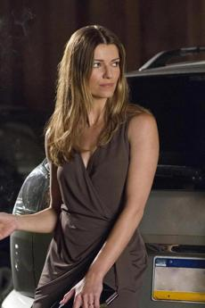 Ivana Milicevic stars as Carrie, Hood's old flame.