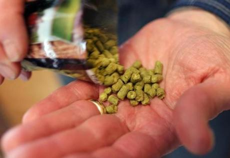 Fogel uses prepackaged hops for this recipe because he is going for a German-style lager. The hops are added to the boiling wort.