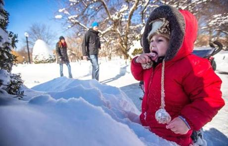 At Boston Public Garden, Jack Boyce, 2, enjoyed a New England winter rite of passage: tasting some winter snow.