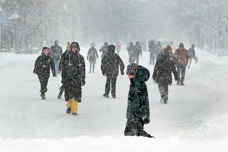 After the worst of the storm, city dwellers converged on a traffic-free Charles Street in Boston.
