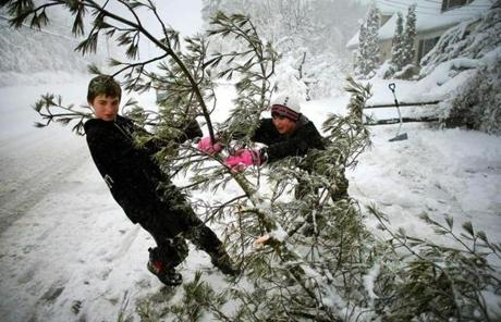 Ryan Reed (left) got a hand from his friend Kyle Young as they tried to pull a downed tree branch in Bridgewater.