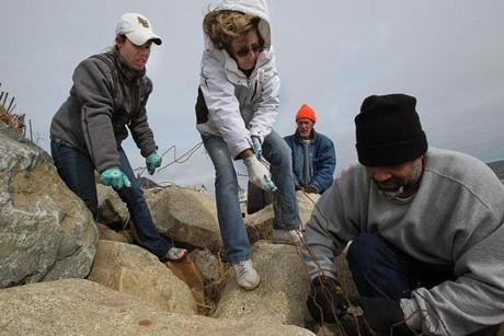 Volunteers worked with homeowners, local businesses, and local and state agencies to assist in the clean up and repair of Plum Island beaches. Working to clear beach rocks of barbed wire in foreground, from left, were mother and daughter Kim and Denise Maloney and Rafael Arce.