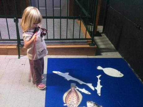 The museum's impressively well-designed interactive exhibits keep young children entertained.