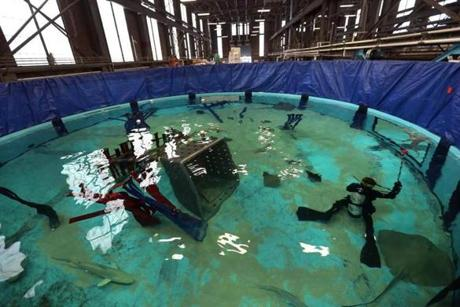 At the New England Aquarium's Animal Care Center in Quincy, fish were prepared for the move back to the tank in Boston. Divers in the waters looked for sharks to be netted and removed.
