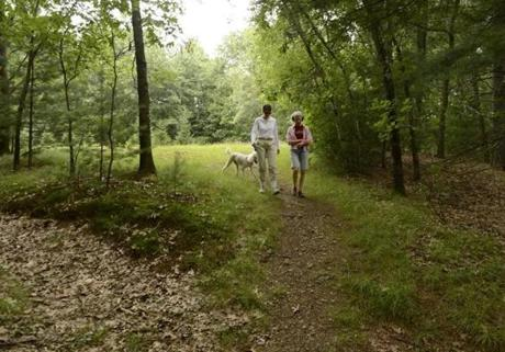 Friends Laurie Bent, left, and Emily Hutcheson strolled in the woods near Hutcheson's Weston home. Bent dressed to prevent tick bites, and brought her dog Maisie, whose white coat makes it easy to spot the ticks that cause Lyme disease.