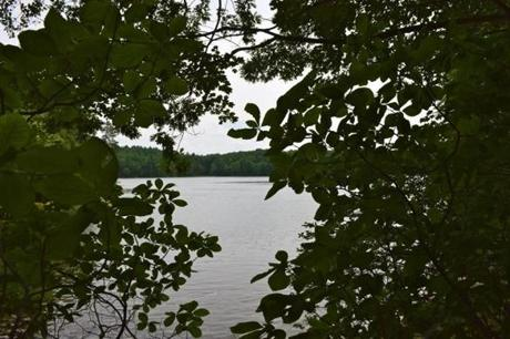 Walden Pond, perhaps the crown jewel of Concord.