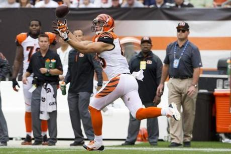 Big Tyler Eifert has been a handful for opponents to deal with in his rookie season (Photo by Jason Miller/Getty Images)