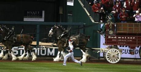 Clay Buchholz warmed up as the Budweiser Clydesdales passed by ahead of Game 4.