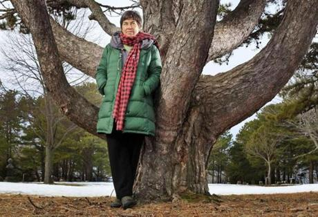 Roxanne Quimby (Shown in 2011) has stepped out of the spotlight and put her son in charge of her plan to create a new National Park in Maine