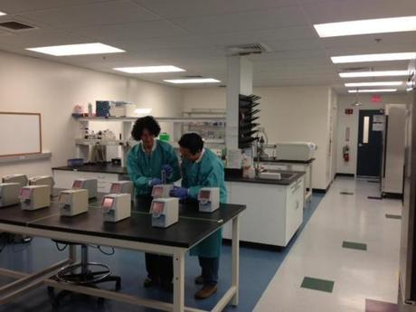 IQuum lab personnel developing the company's diagnostic device.