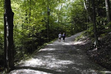 The nature path leading to Bash Bish Falls State Park.