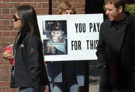 Members of the Massachusetts Animal Rights Coalition protested Harvard's use of monkeys in research.