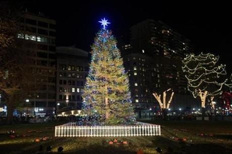 Boston, MA - 12/3/2015 -Lights illuminate the Boston Christmas tree during the annual Christmas tree lighting in the Boston Common in Boston, MA, December 3, 2015. (Keith Bedford/Globe Staff)