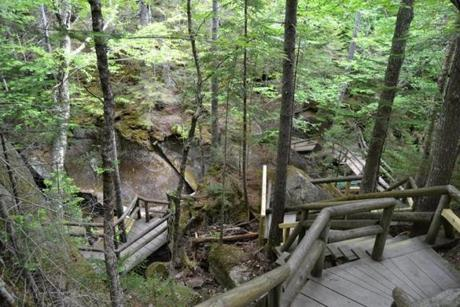 for 07cave -- An extensive boardwalk system with ladders and bridges links 11 caves at Lost River Gorge and Boulder Caves (Pamela Wright)