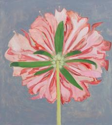 "Lois Dodd, ""Pink Scabiosa, Back View,"" 2013."
