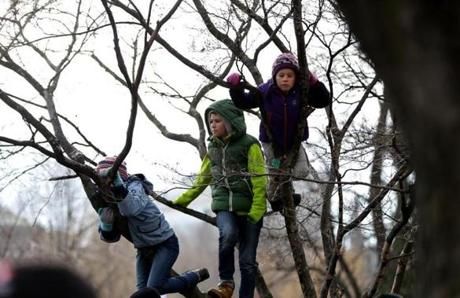 Kids climbed trees to get a better view at the demonstration.