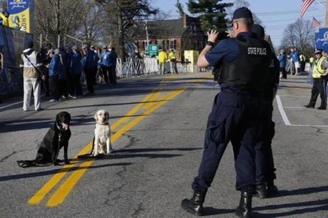 Massachusetts State Police members photographed their dogs at the starting line of the Boston Marathon in Hopkinton.